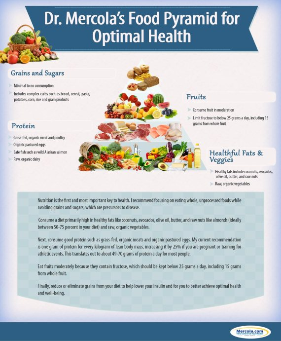 Mercola Food Pyramid - Large